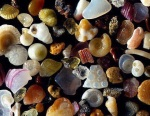 Microscopic view of sand on the beach