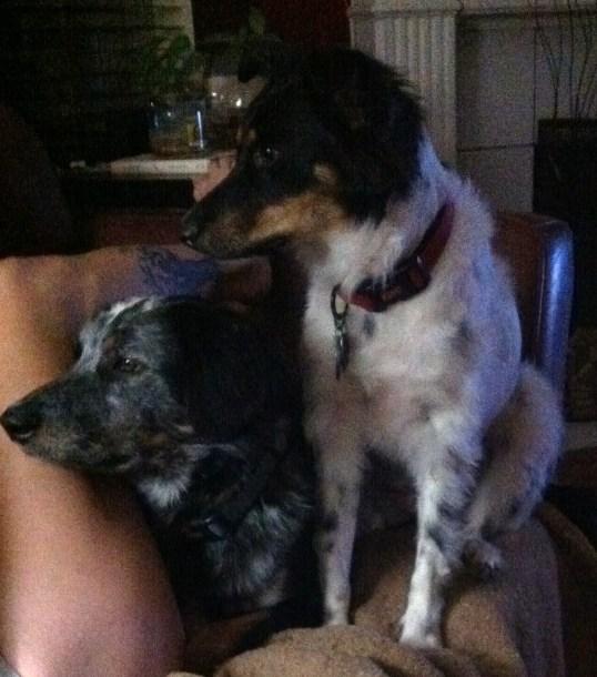 Jake and Eva 2